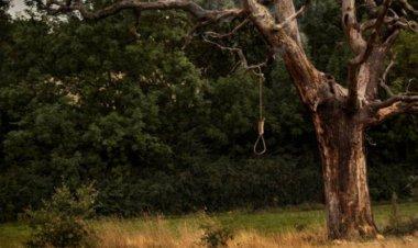 Hallan a joven colgado de árbol en Ecatepec
